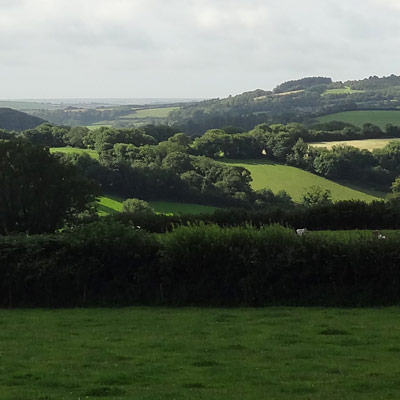 South Hams countryside near Diptford and Kingsbridge